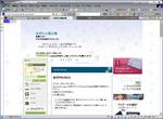 XP_IE7_Luna_Snow.PNG